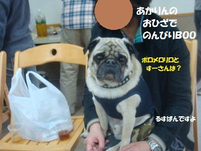 DSC05288_20121023145718.jpg