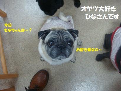 DSC05292_20121023145717.jpg