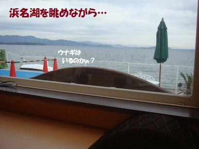 DSC05393_20121114201048.jpg