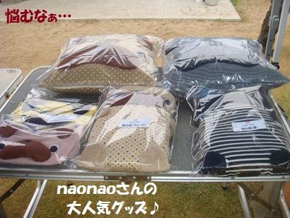 DSC05464_20121121025637.jpg