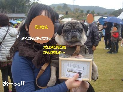 DSC05518_20121121033735.jpg