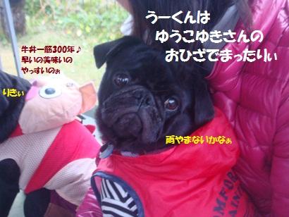 DSC05537_20121122002913.jpg