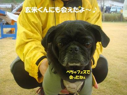 DSC05561_20121122021529.jpg