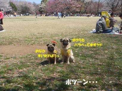DSC05629_20121024012025.jpg