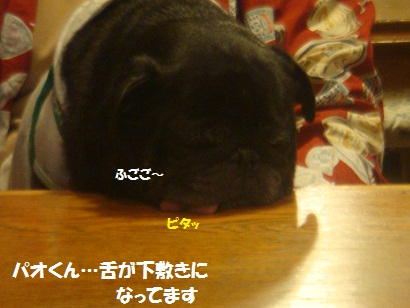 DSC05749_20121202053636.jpg
