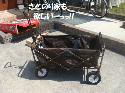 DSC05799_20121024023348.jpg