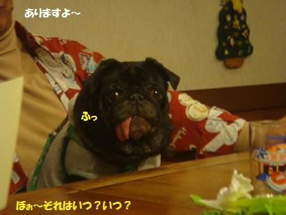 DSC05811_20121201165059.jpg
