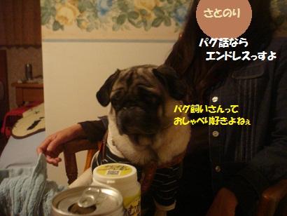 DSC05863_20121202044419.jpg