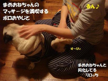 DSC05886_20121202044419.jpg