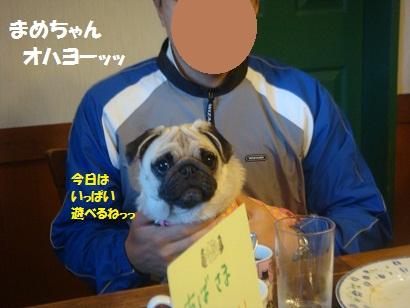 DSC05947_20121201175307.jpg
