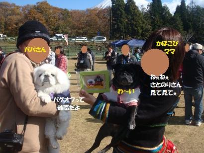 DSC06033_20121202161340.jpg