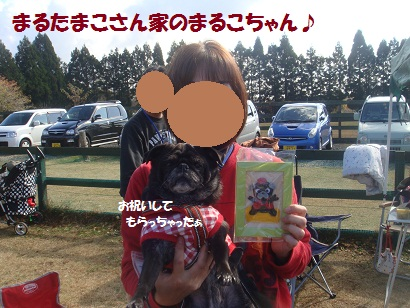 DSC06038_20121202161339.jpg