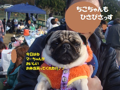 DSC06064_20121204032911.jpg