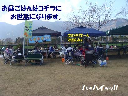 DSC06105_20121202164757.jpg