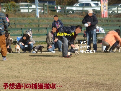 DSC06206_20121206205336.jpg