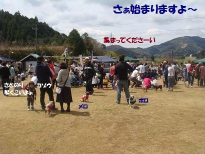 DSC06323_20121028115709.jpg