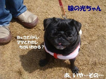 DSC06360_20121028145150.jpg