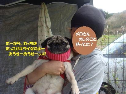 DSC06405.jpg