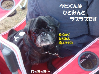 DSC06440_20121206141149.jpg