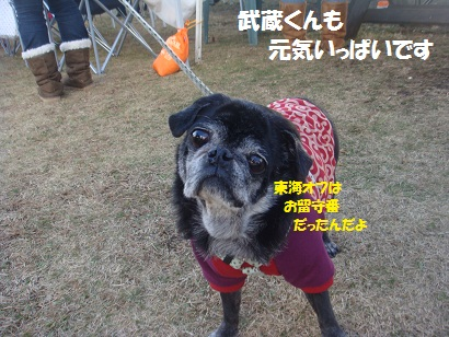 DSC06460_20121208224141.jpg
