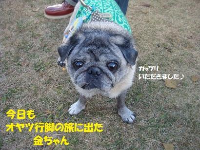 DSC06470_20121208224141.jpg