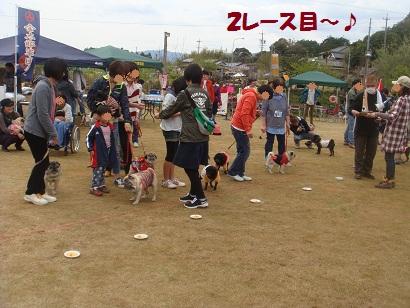 DSC06558_20121030023228.jpg