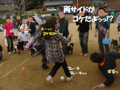 DSC06602_20121029174822.jpg