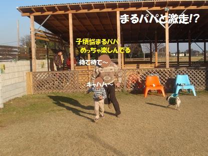 DSC06714_20140131042739858.jpg