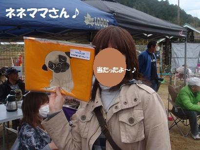 DSC06770.jpg
