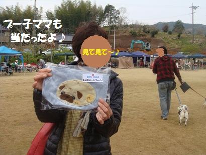 DSC06780_20121103131805.jpg
