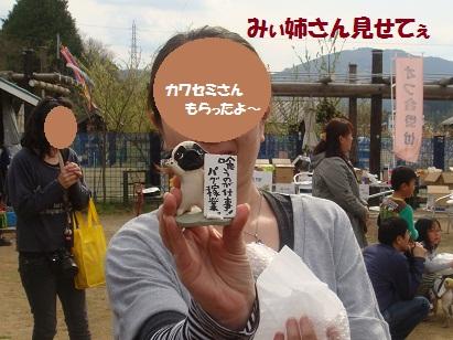 DSC06799_20121103131805.jpg