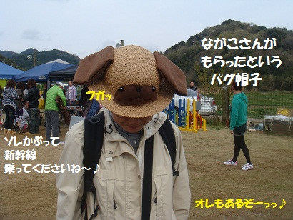 DSC06828_20121103150323.jpg