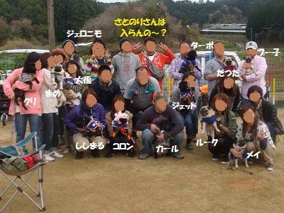 DSC06852_20121103150717.jpg