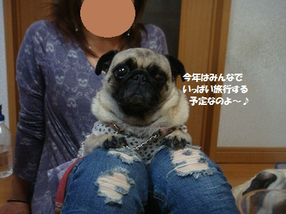 DSC07354_20121106044119.jpg