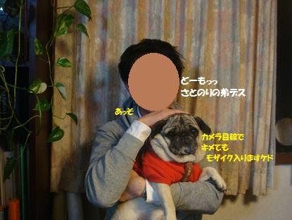 DSC08274_20130103172222.jpg