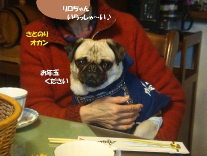 DSC08289_20130103172222.jpg