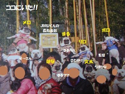 DSC08325_20130106172659.jpg