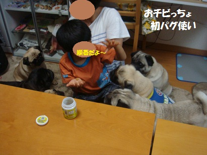 DSC08410_20120822050331.jpg