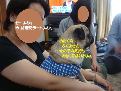 DSC09095_20121122204916.jpg