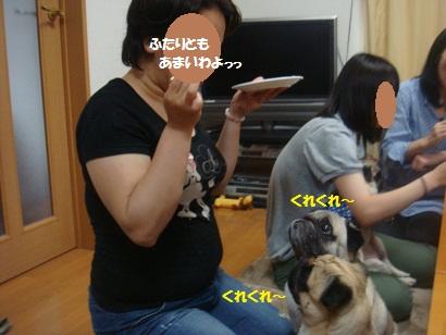 DSC09159_20121122212057.jpg
