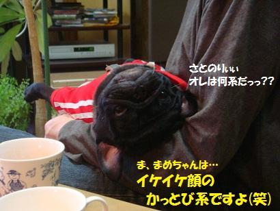 DSC09279_20120821193957.jpg