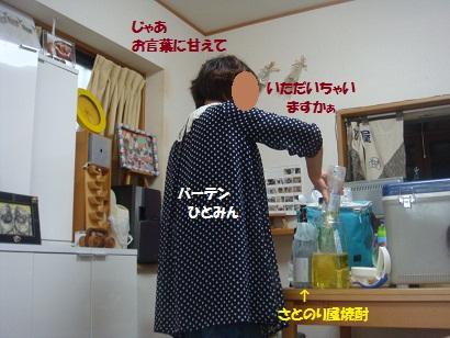 DSC09610_20121130032429.jpg