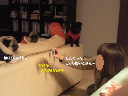 NEC_0001_20120921083156.jpg
