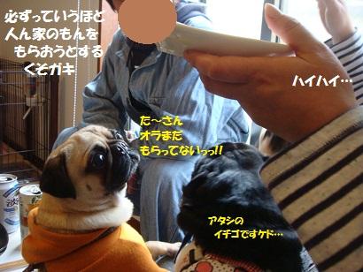 PMBS0116.jpg