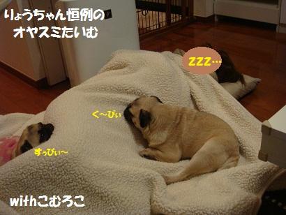 PMBS0322.jpg