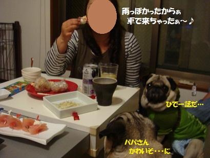 PMBS0338.jpg