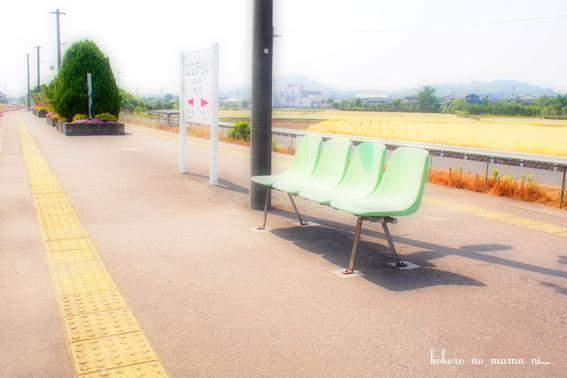 0524_8.jpg