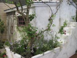 漆喰の壁と階段がかわいいおうち
