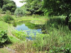 ピクトレスクな池