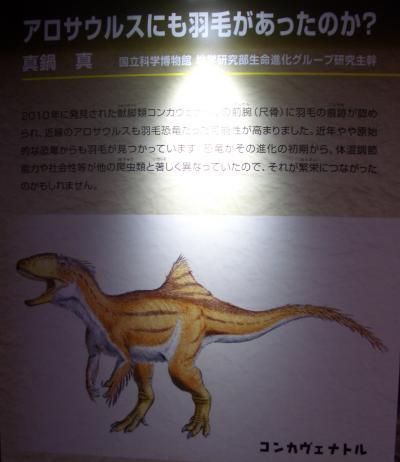 アロサウルス羽毛説明